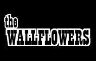 Wallflowers_webthumb.jpg